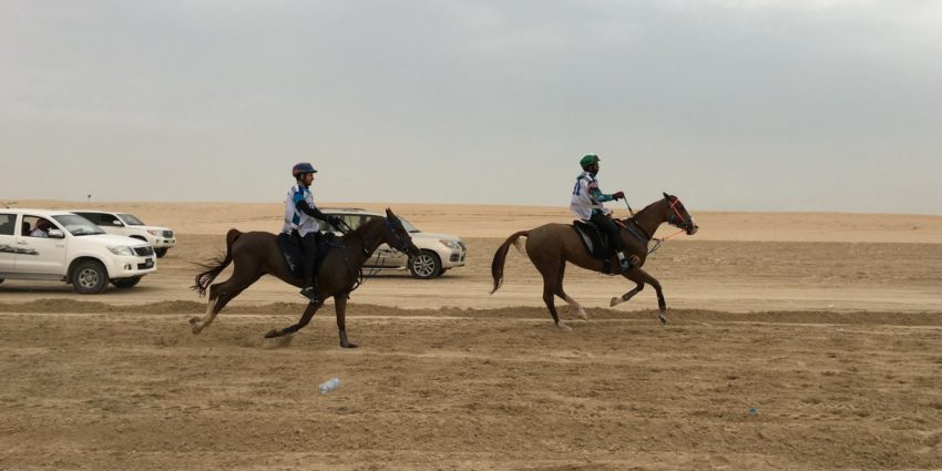 Emir Sword Endurance Ride