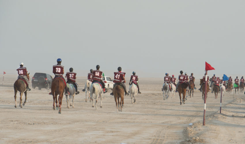 Riders at the start of the Al Hamla Endurance Cup