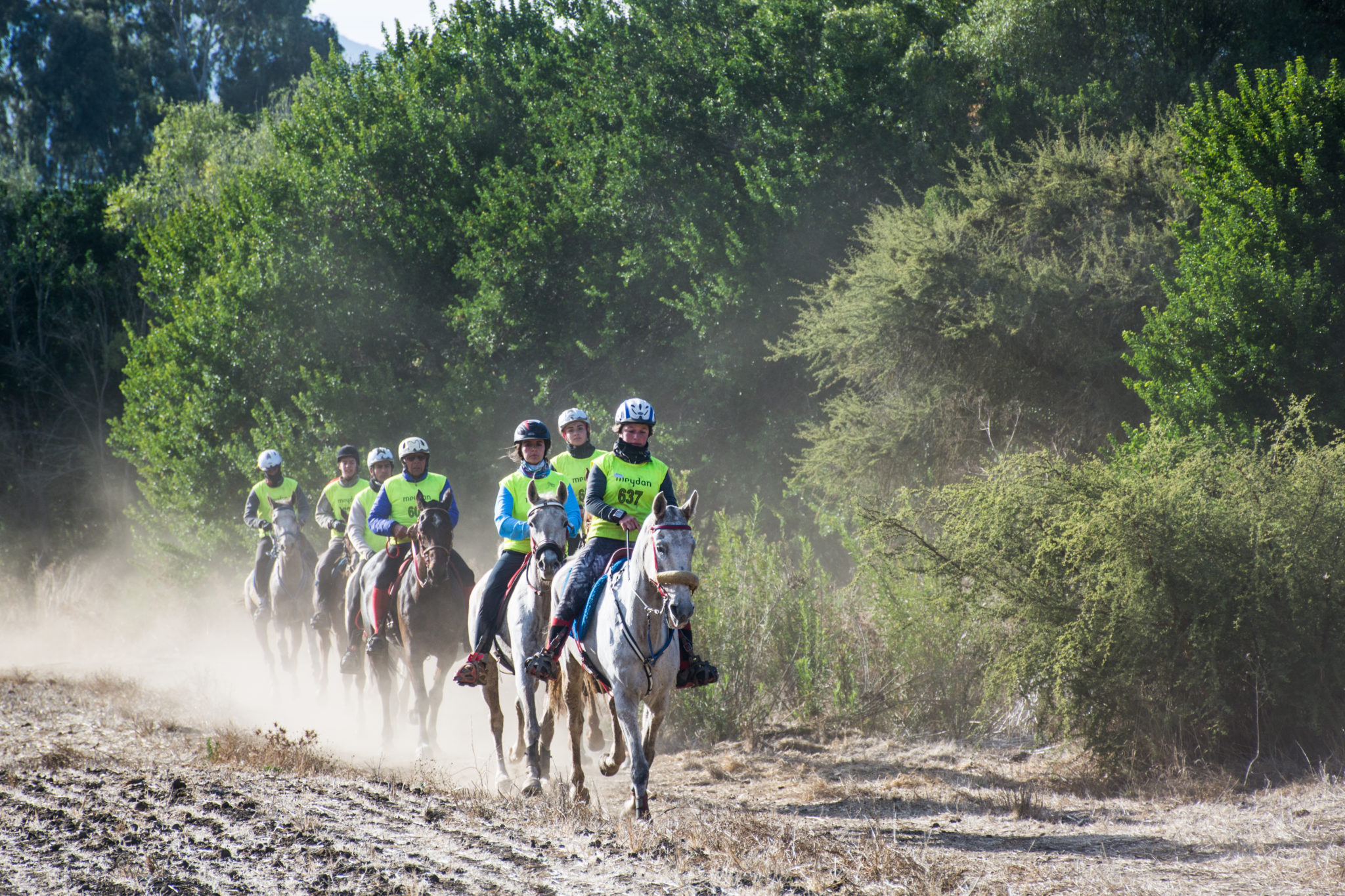 Lagunillas – Matetic, Chile. Group of riders.