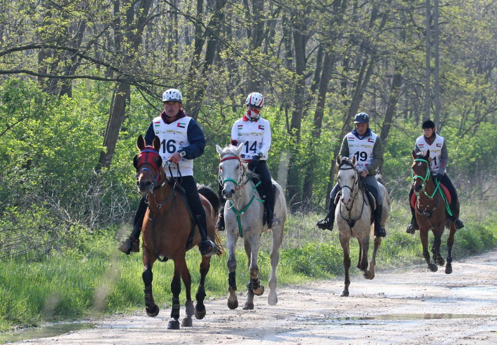 Endurance World Babolna Derby.Riders leaving the forest.