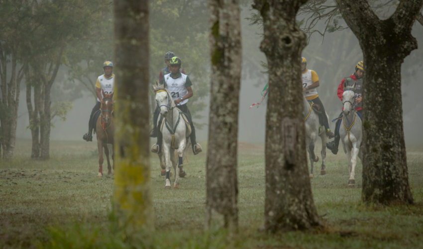 Endurance World Brasilia. Riders emerging from the forest.