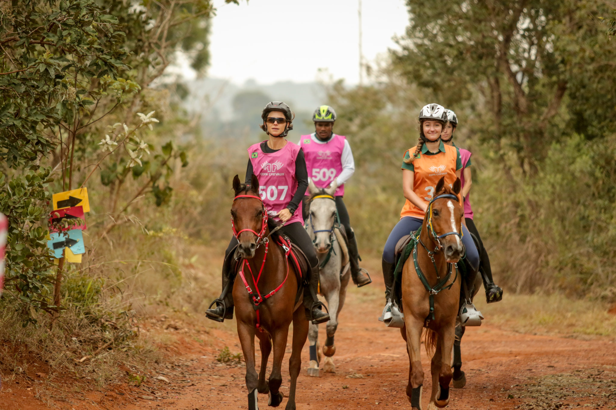 Endurance World Brasilia. A group of riders leaving the forest.