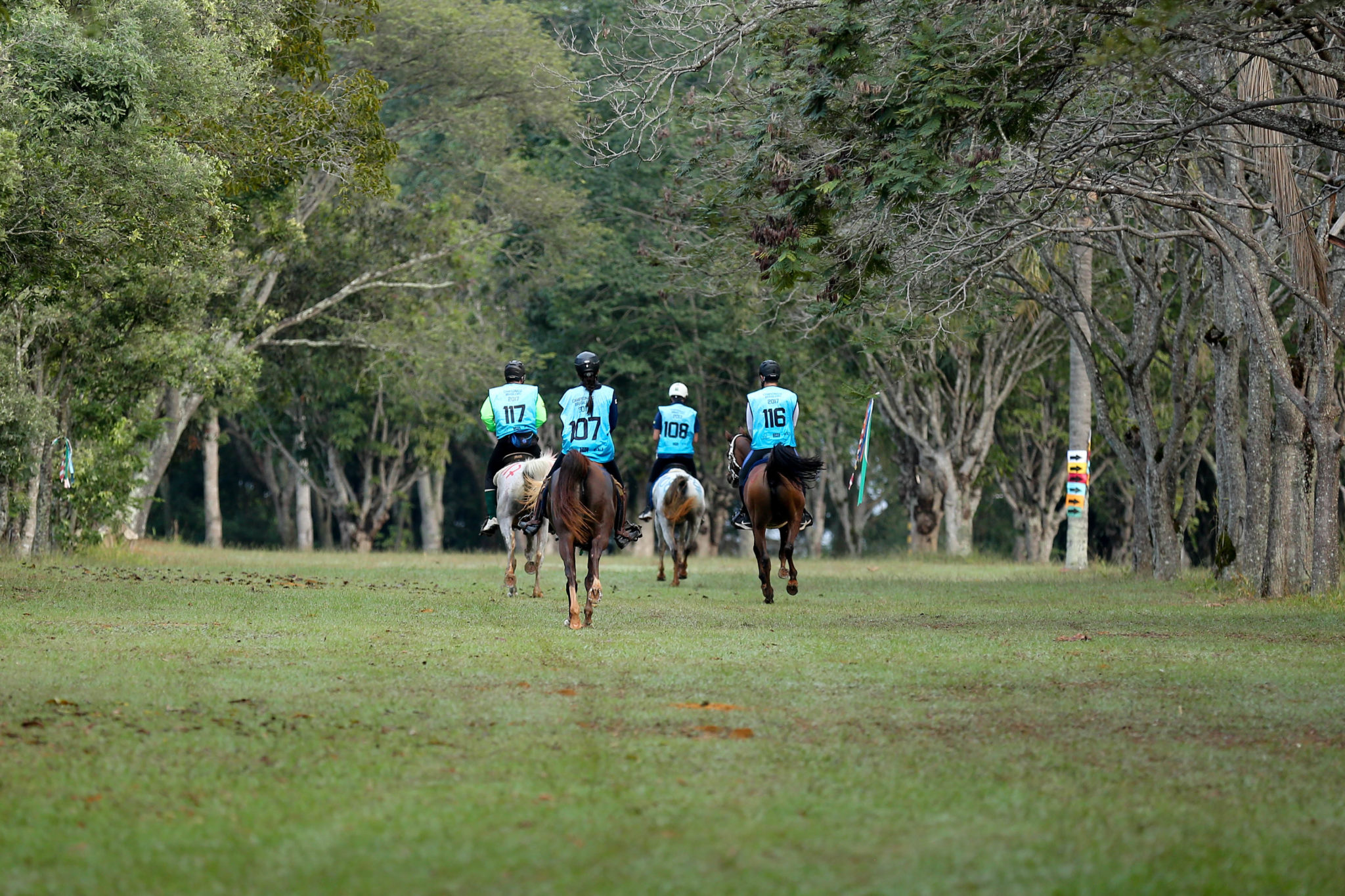 Endurance World Brasilia. Riders leaving for the next loop.