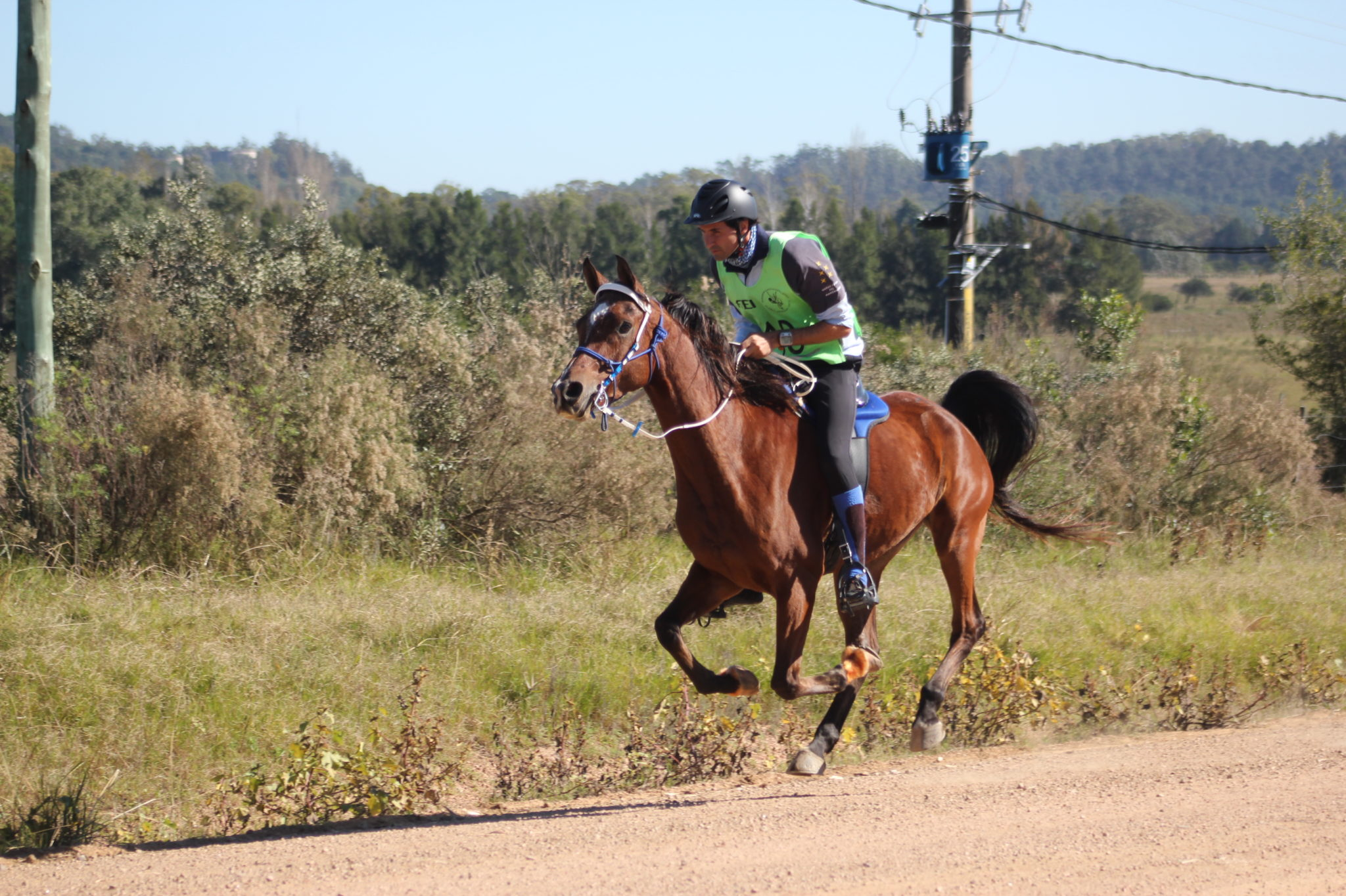 Endurance World Punta del Este. Rider in big attack.