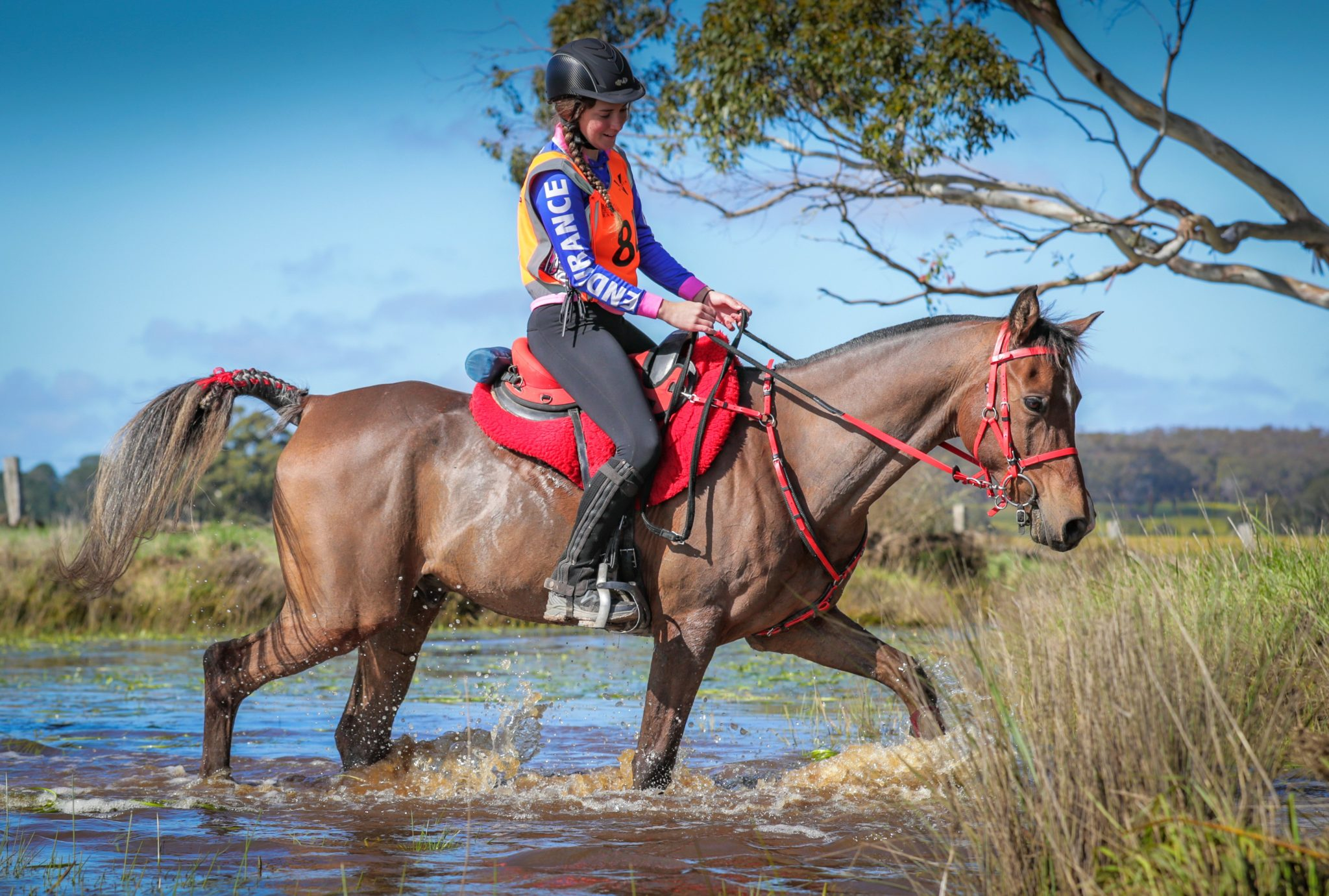 Endurance World Tahlia Franke. Crossing a river.