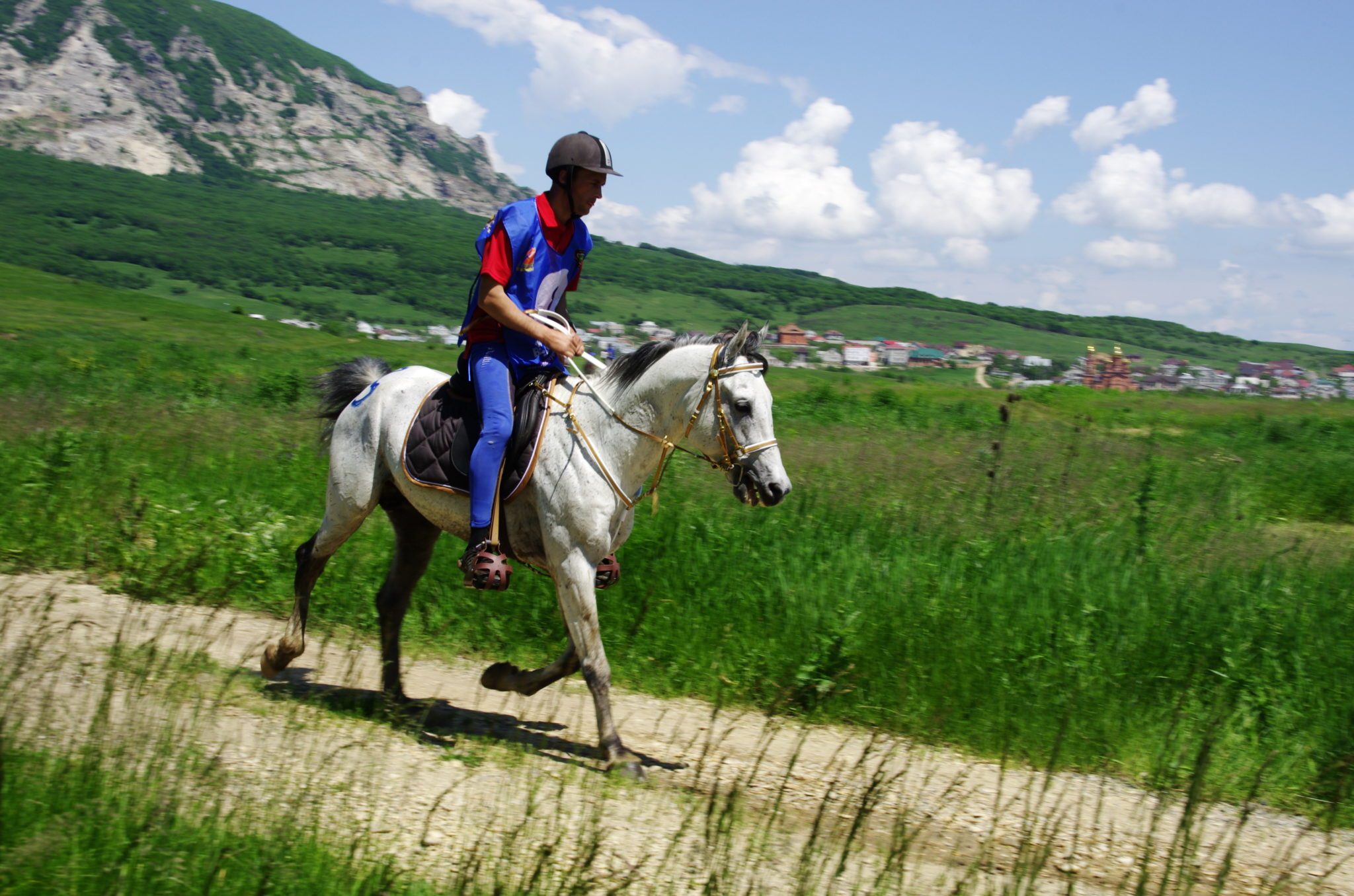 Endurance World Tersk Stud Novotersky. Riding through the fields.