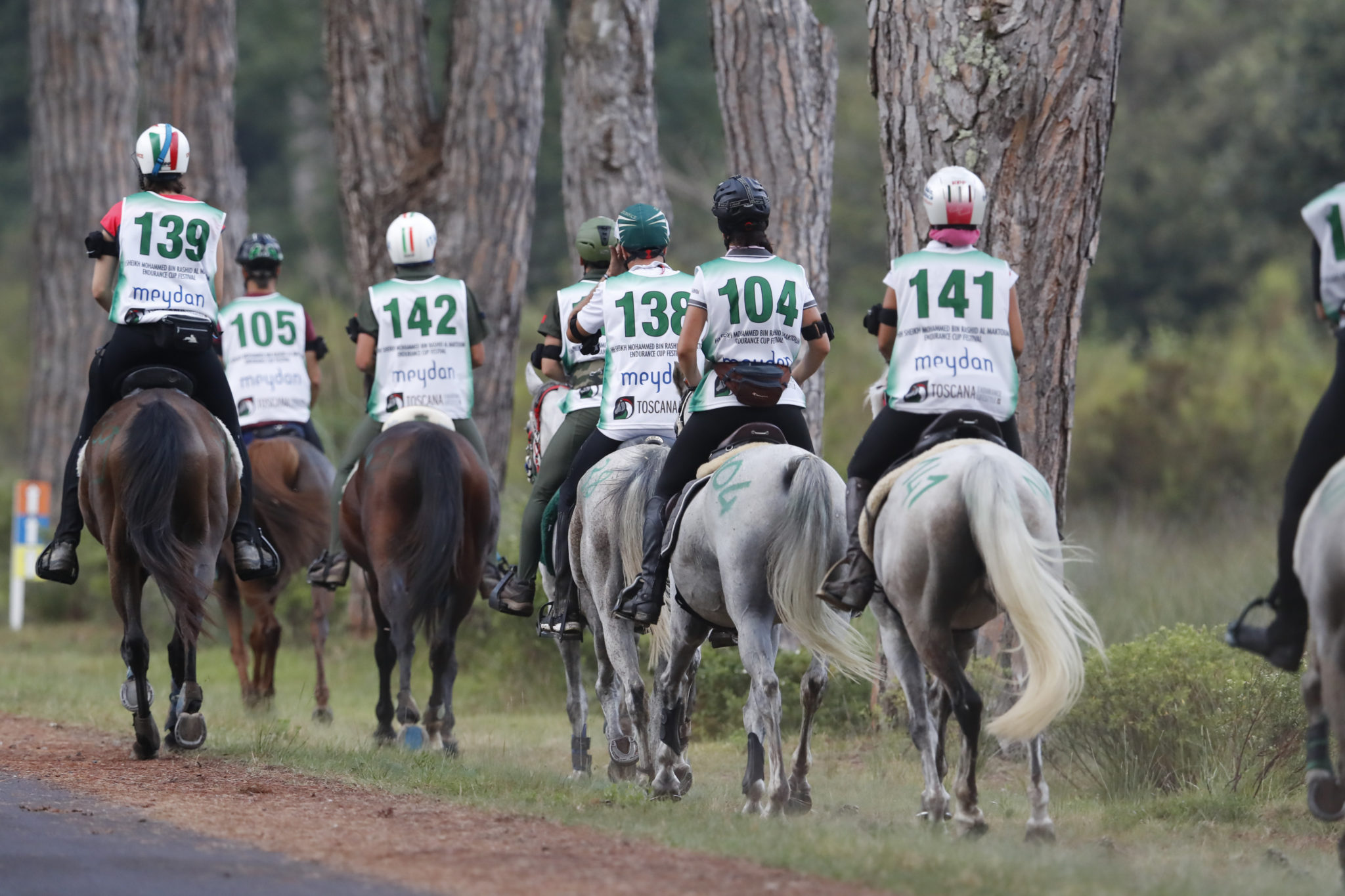Endurance World Toscana Endurance LIfestyle. Different classes participate.