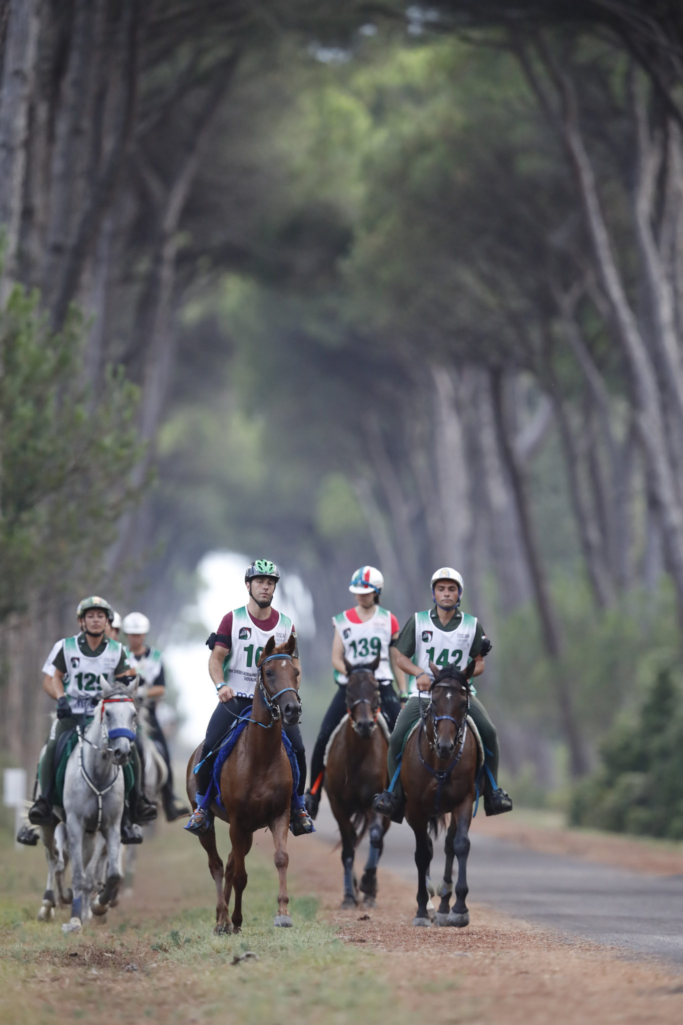 Endurance World Toscana Endurance Lifestyle. In the forest.