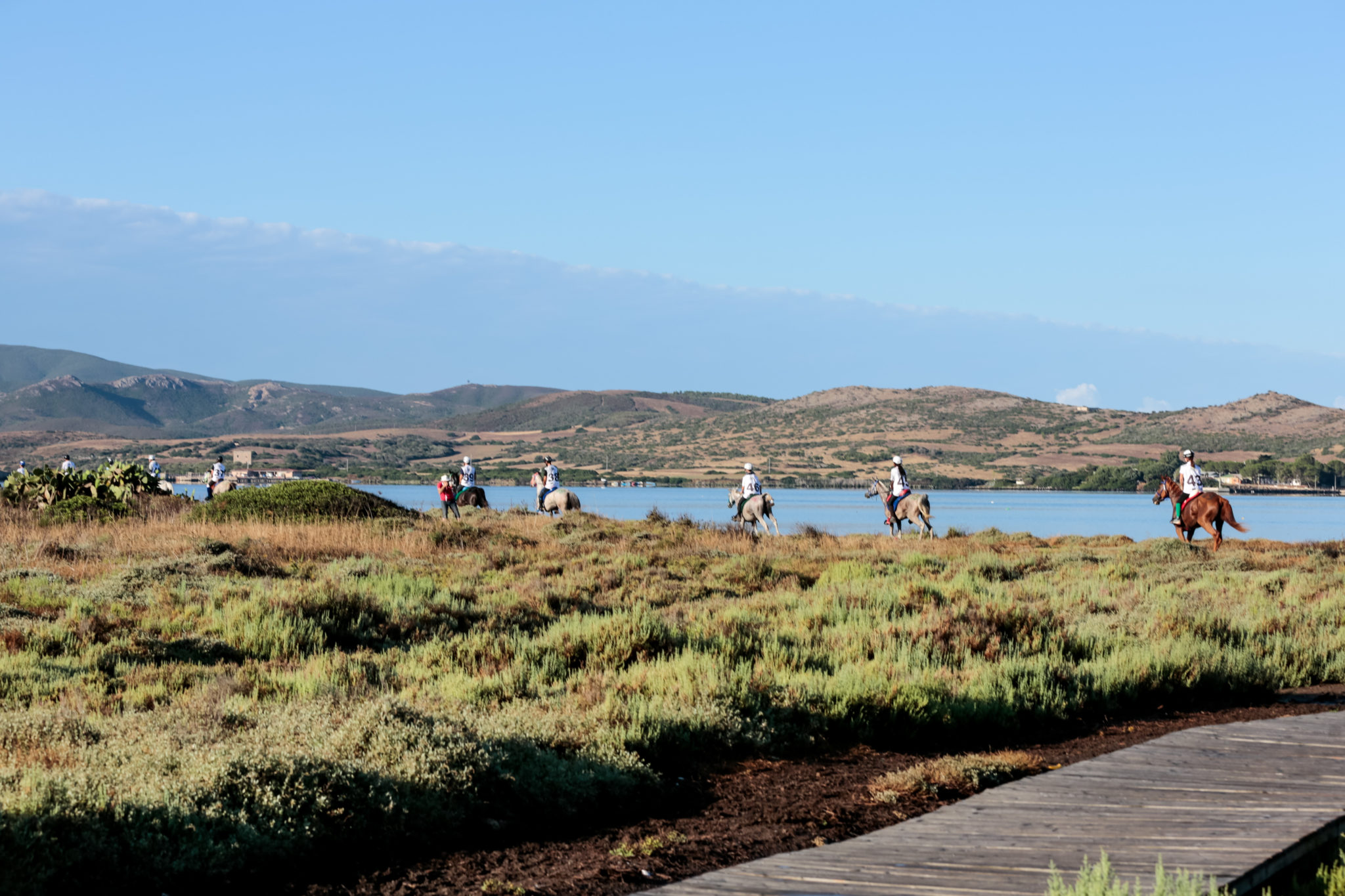 Endurance World Sardinia. Racing next to the water.