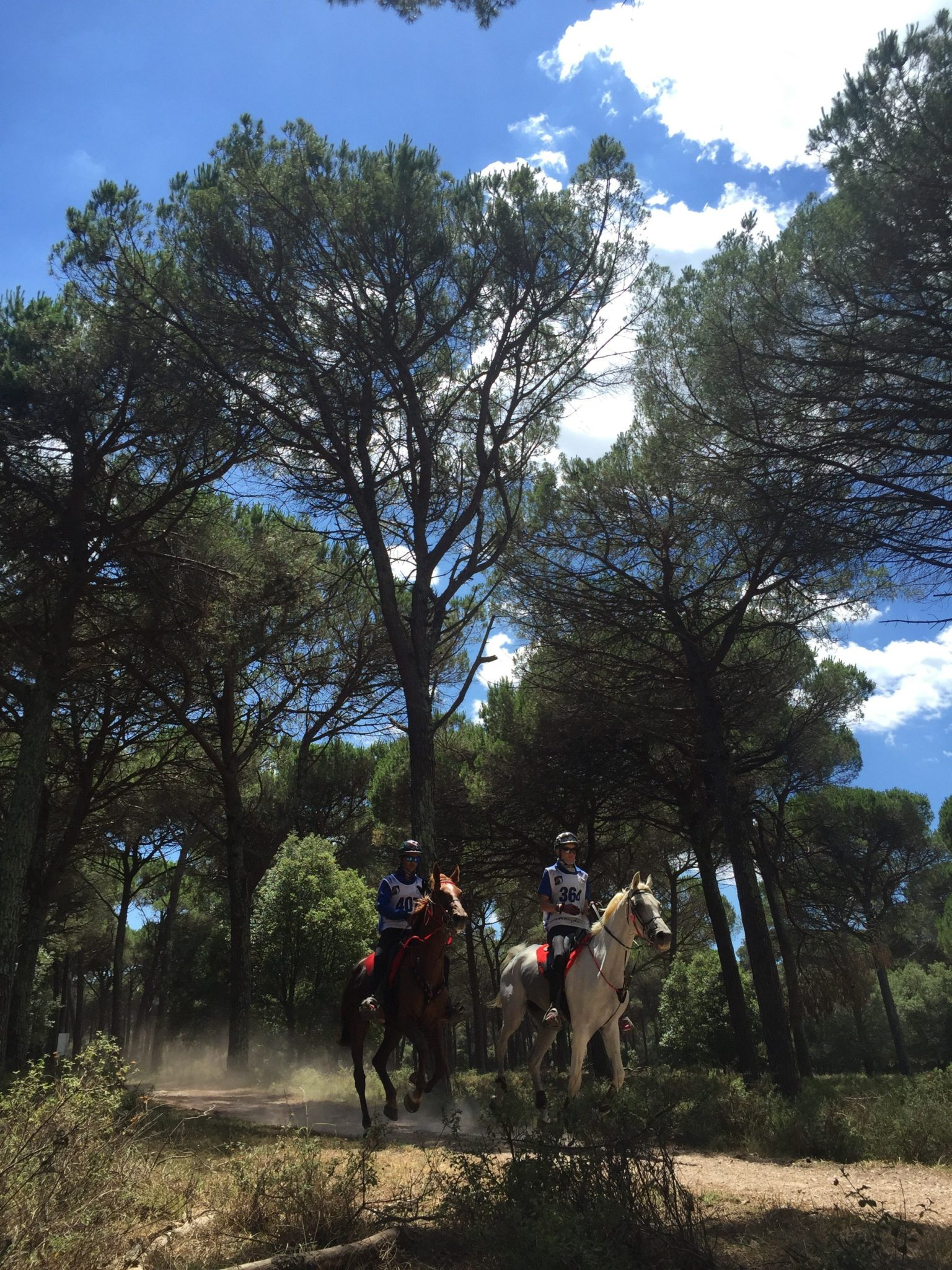 Endurance World Toscana Endurance Lifestyle. Riding in the woods.