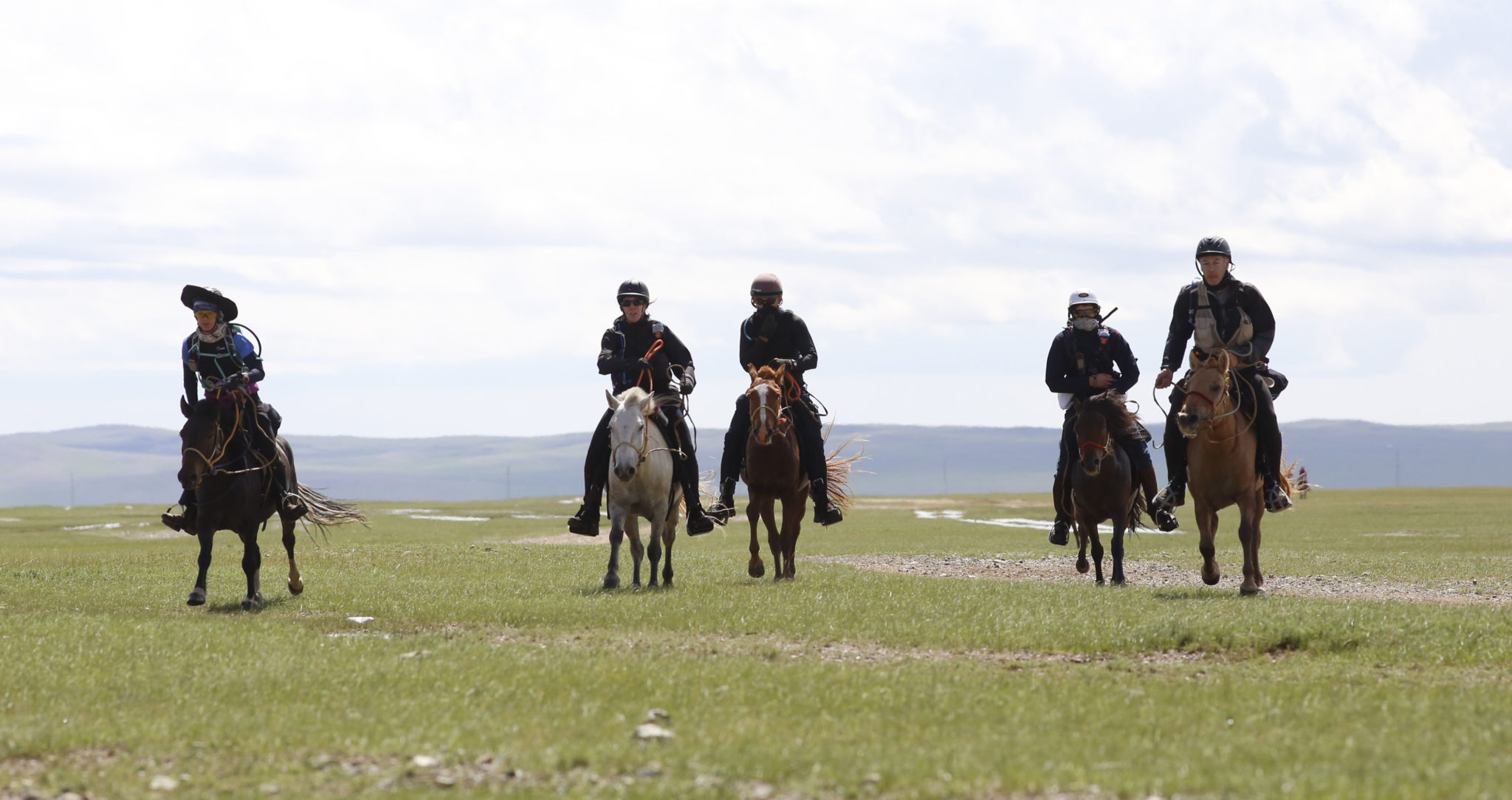 Endurance World Mongol Derby. A split group.