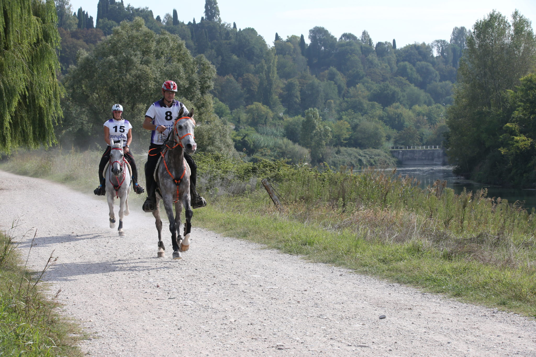 Endurance World Verona. Riding together.