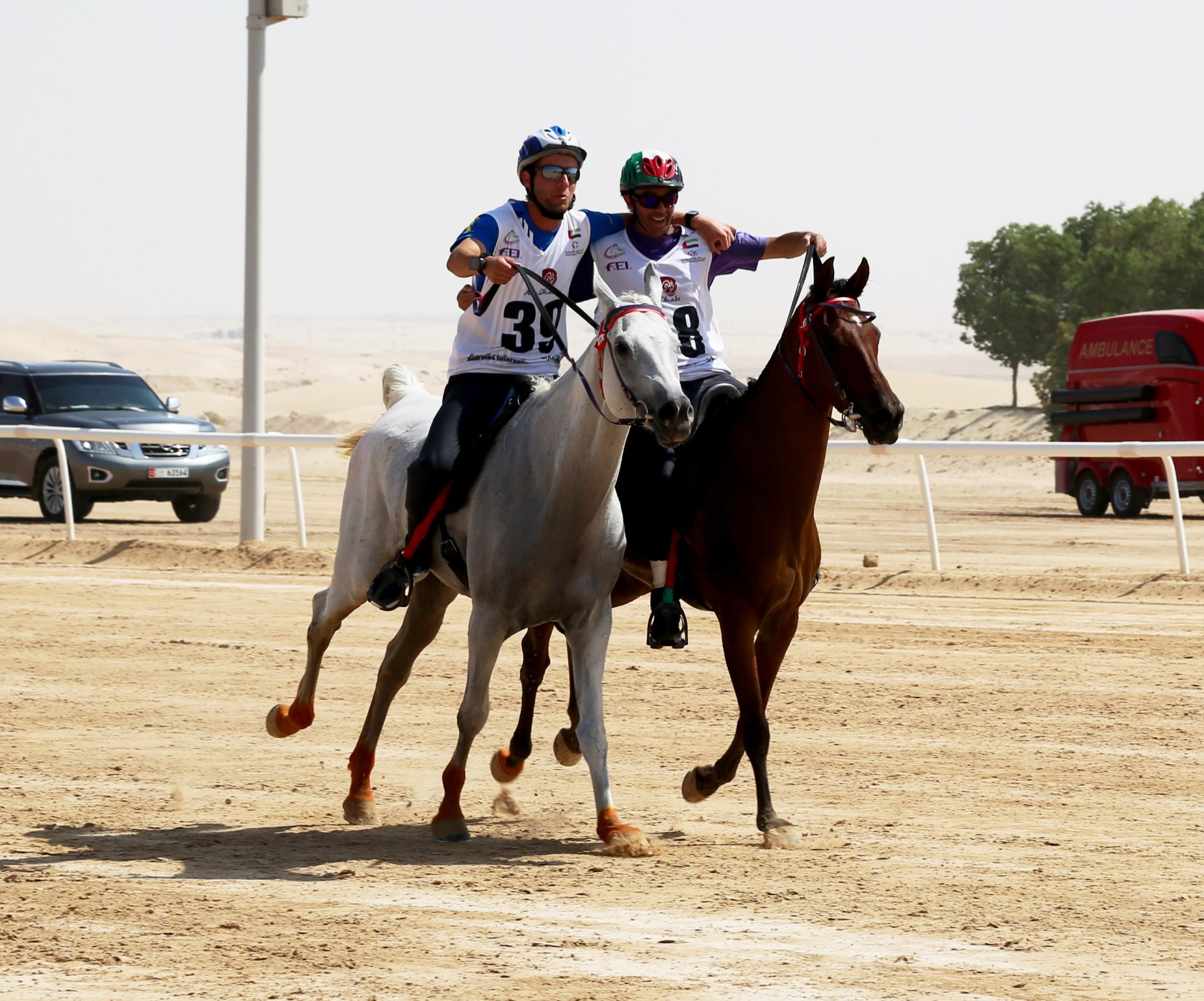 Endurance World Al Wathba Cup. Three and four.