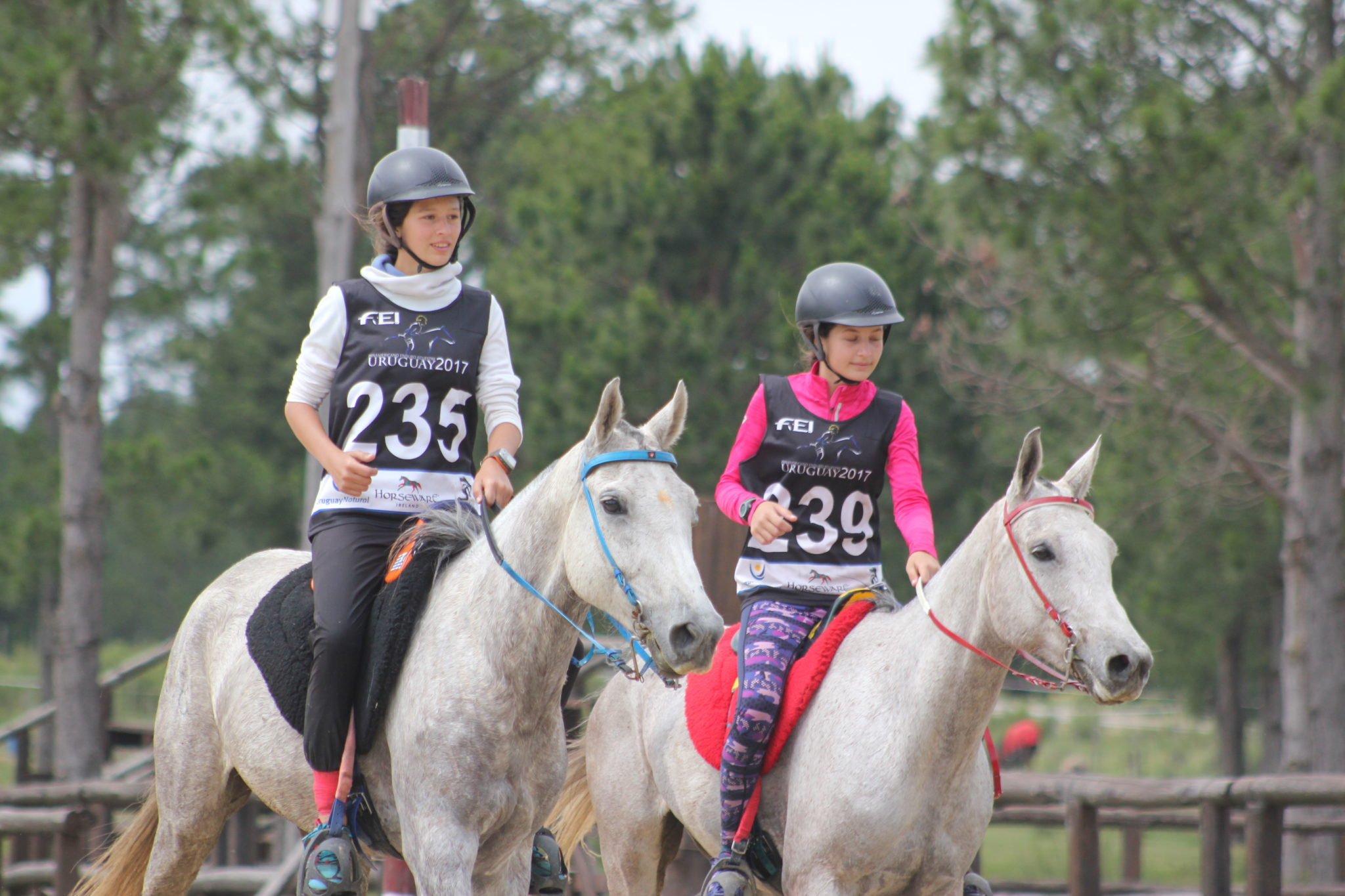 Endurance World Haras La Perseverancia. Two juniors.