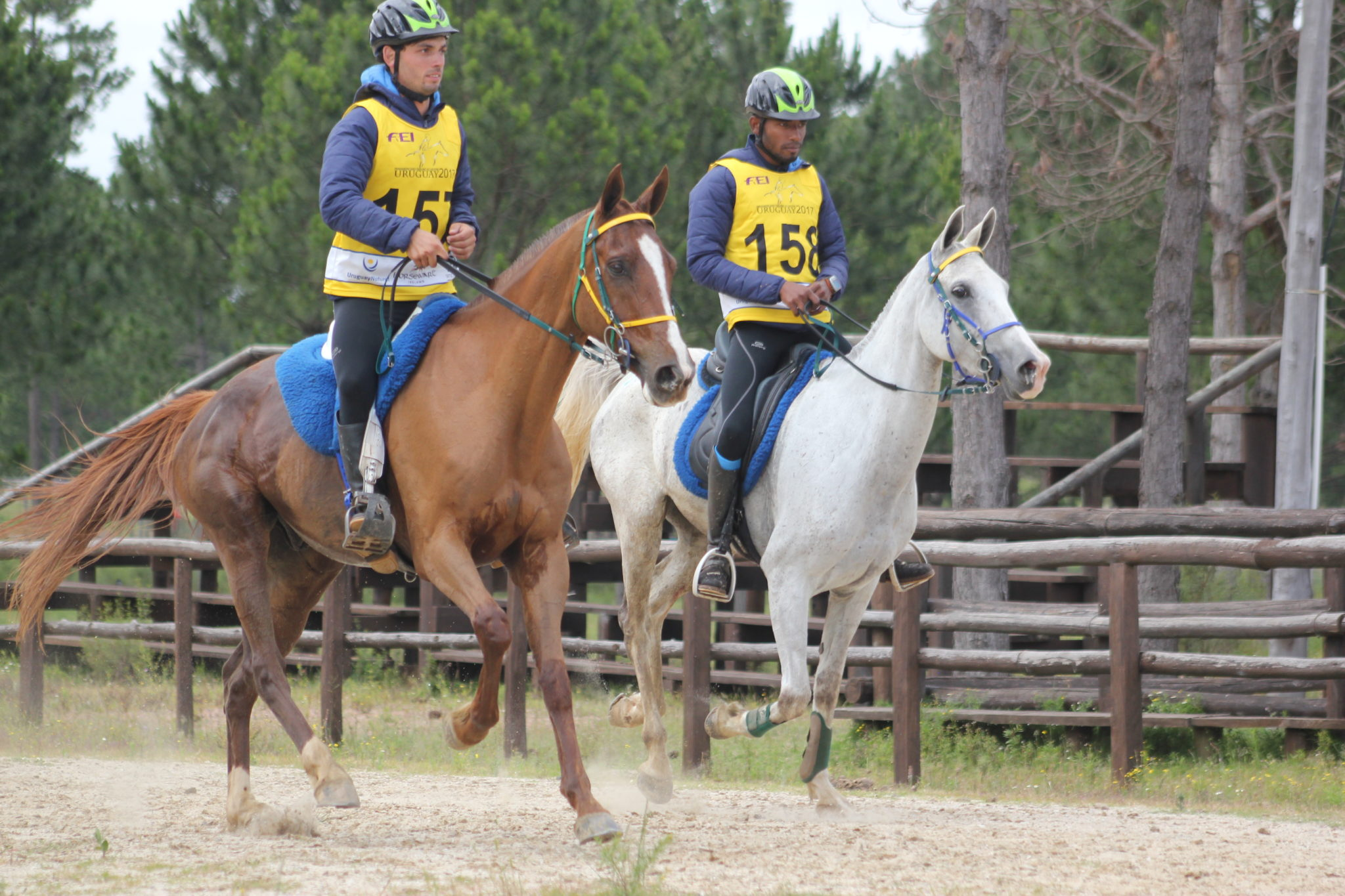 Endurance World Haras La Perseverancia. Two together.