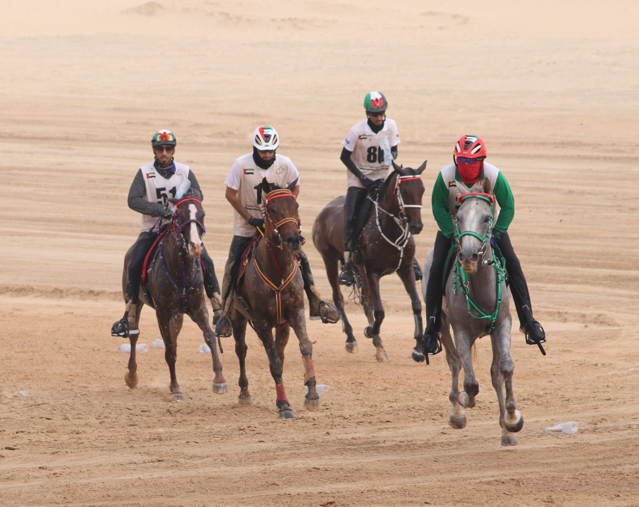 Endurance World Emirates International Endurance Cup. Riding in a group.