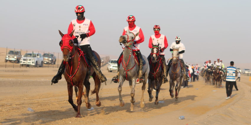 Endurance World Al Maktoum Cup. The leader.