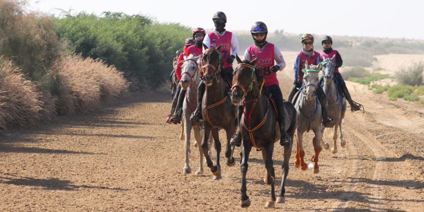 Endurance World Al Maktoum Festival. Ladies riding in group.