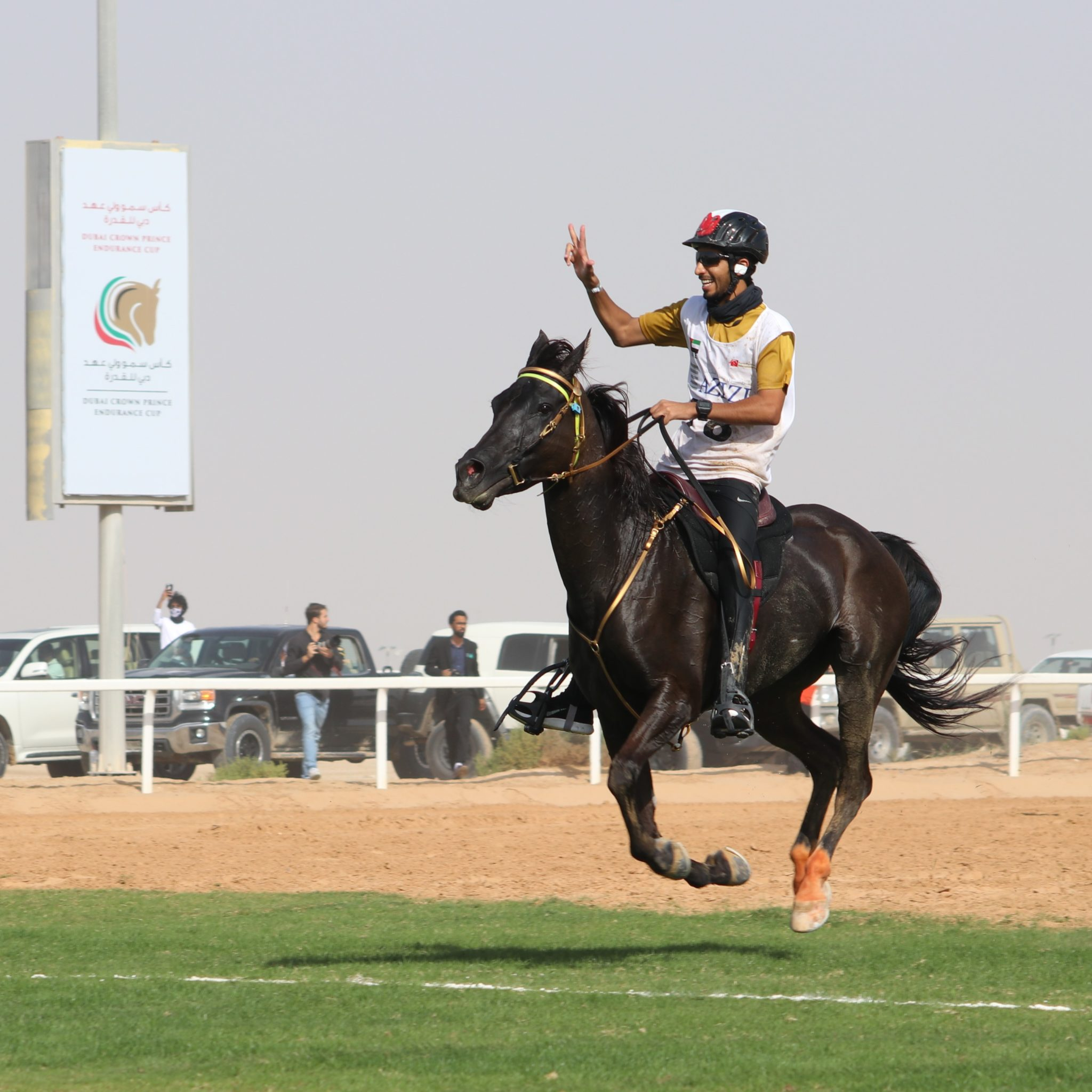 Endurance World Al Maktoum Festival. Winner of private stables.