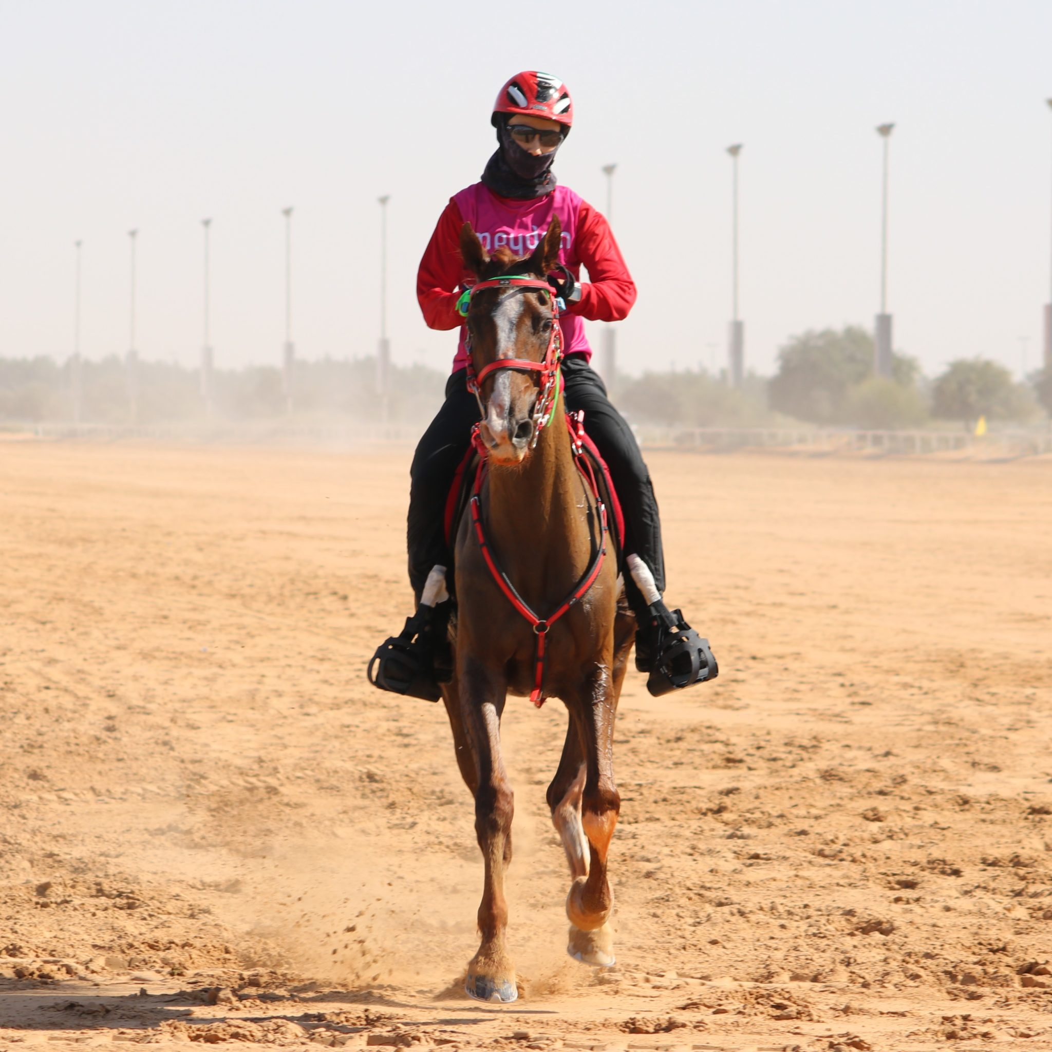 Endurance World Al Maktoum Festival. Winner ladies race.