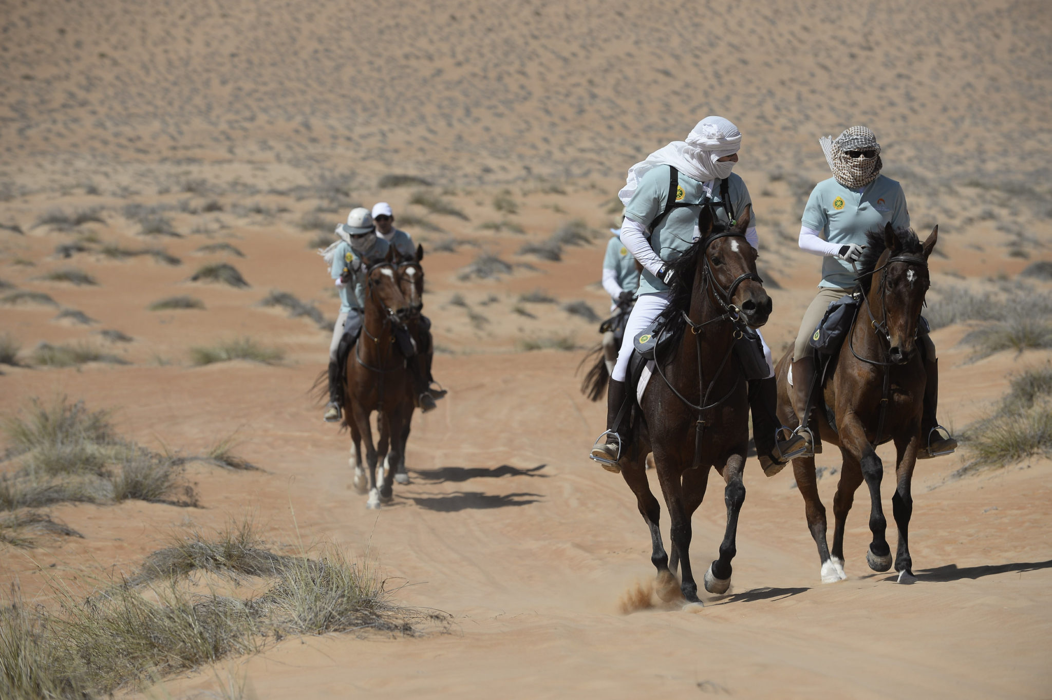 Endurance World Gallops of Morocco. Never easy.