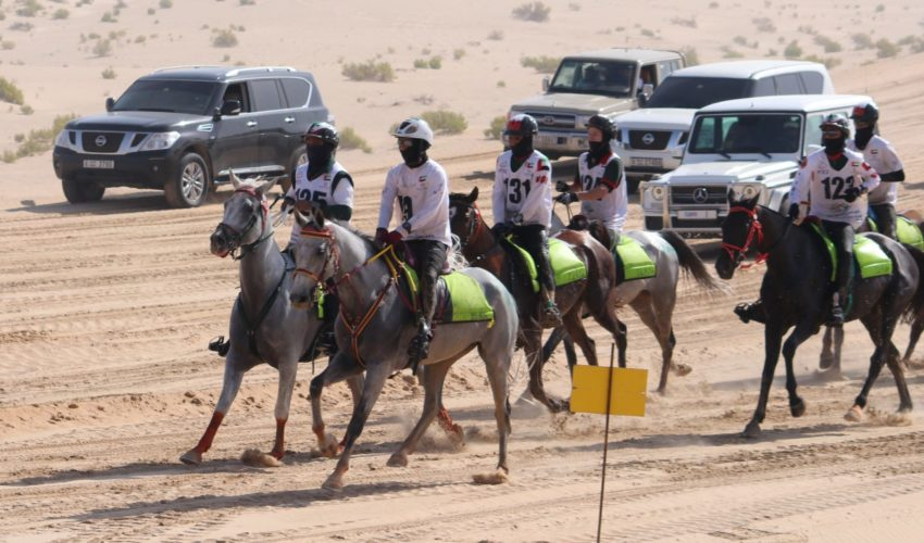 Endurance World HH The President of UAE Endurance Cup. The leading group.