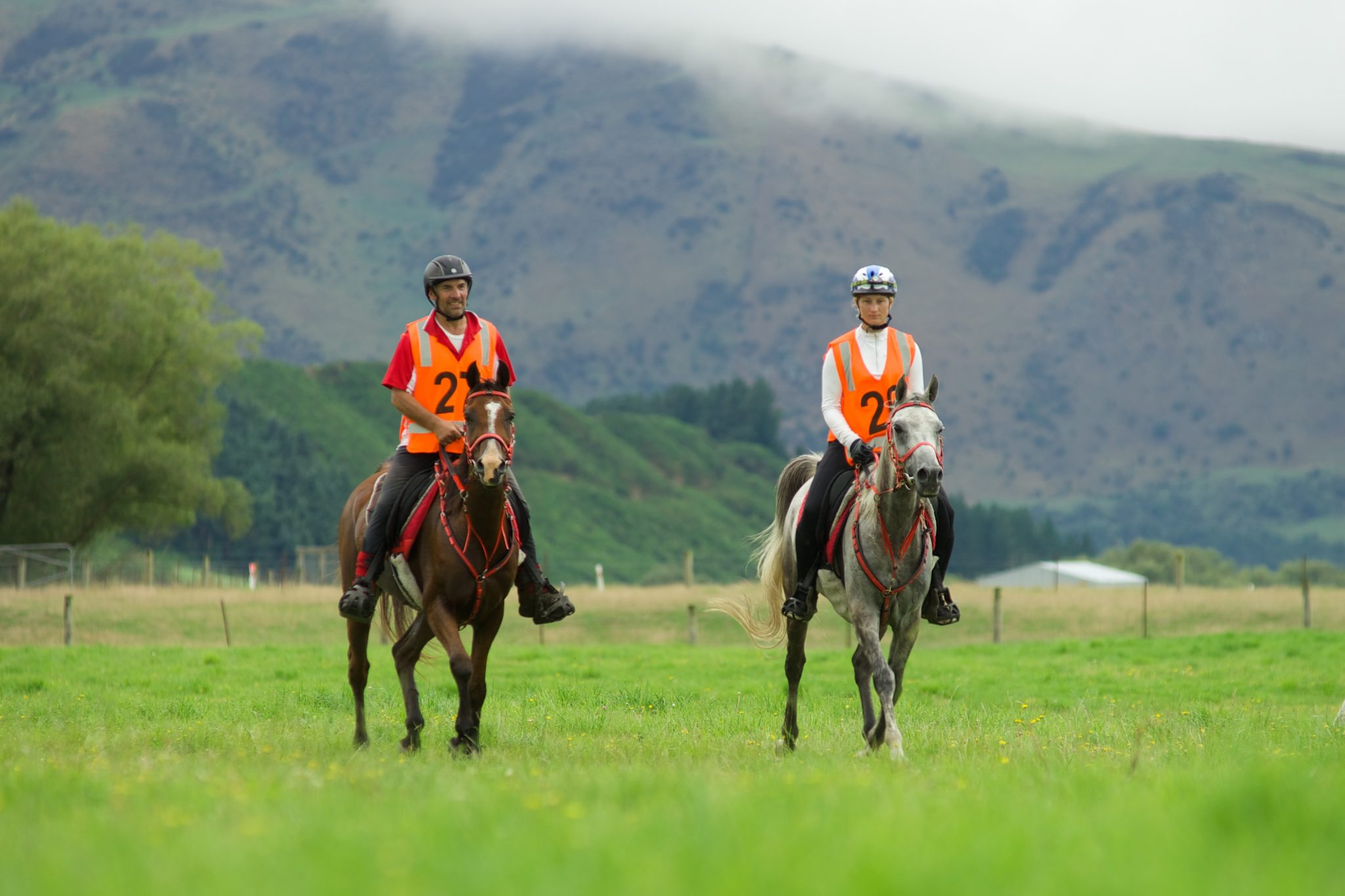 Endurance World South Island Championship. Riding together.
