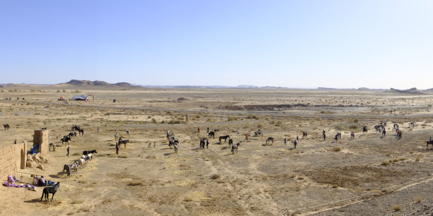 Endurance World Gallops of Morocco 2018. Panoramic view.